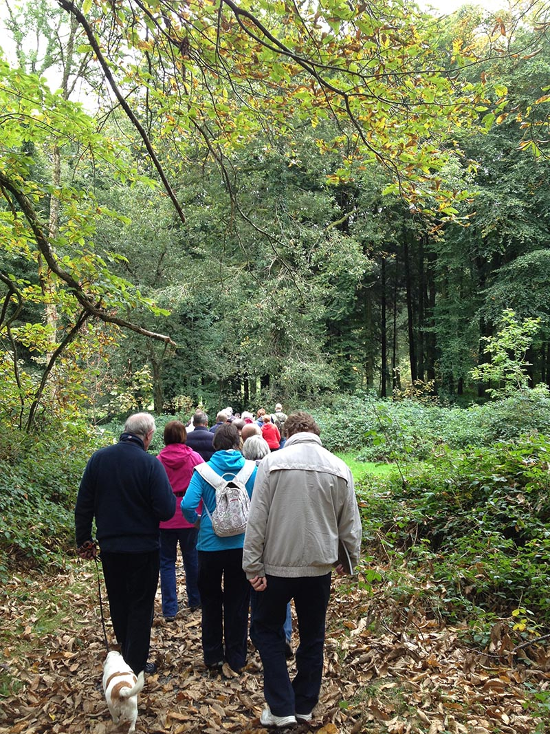 Woodlands For Health Walkers On Trail